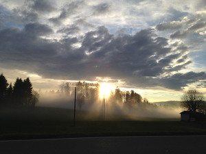 lueur brouillard_0002auderset