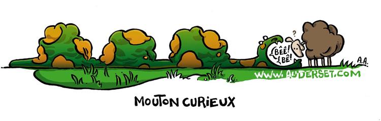m curieux www