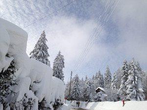 neige Mt-So_petit