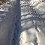 neige ombre_0002 pt