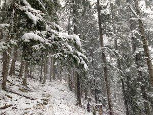premier neige 2014_0006auderset
