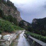 sion 2014_0019